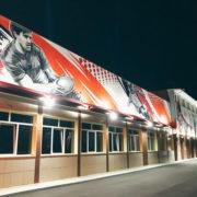 художественная роспись стен в Москве на заказ