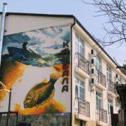Rospis'_fasada_graffiti_oformlenie_Sochi_Kambala_03
